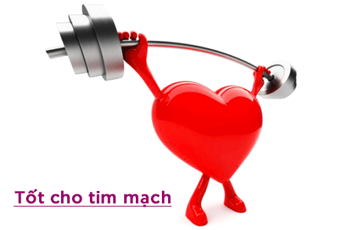 tot-cho-suc-khoe-chonmuagiadung